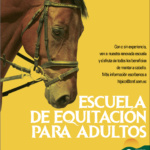 equitacion-adultos_out-01