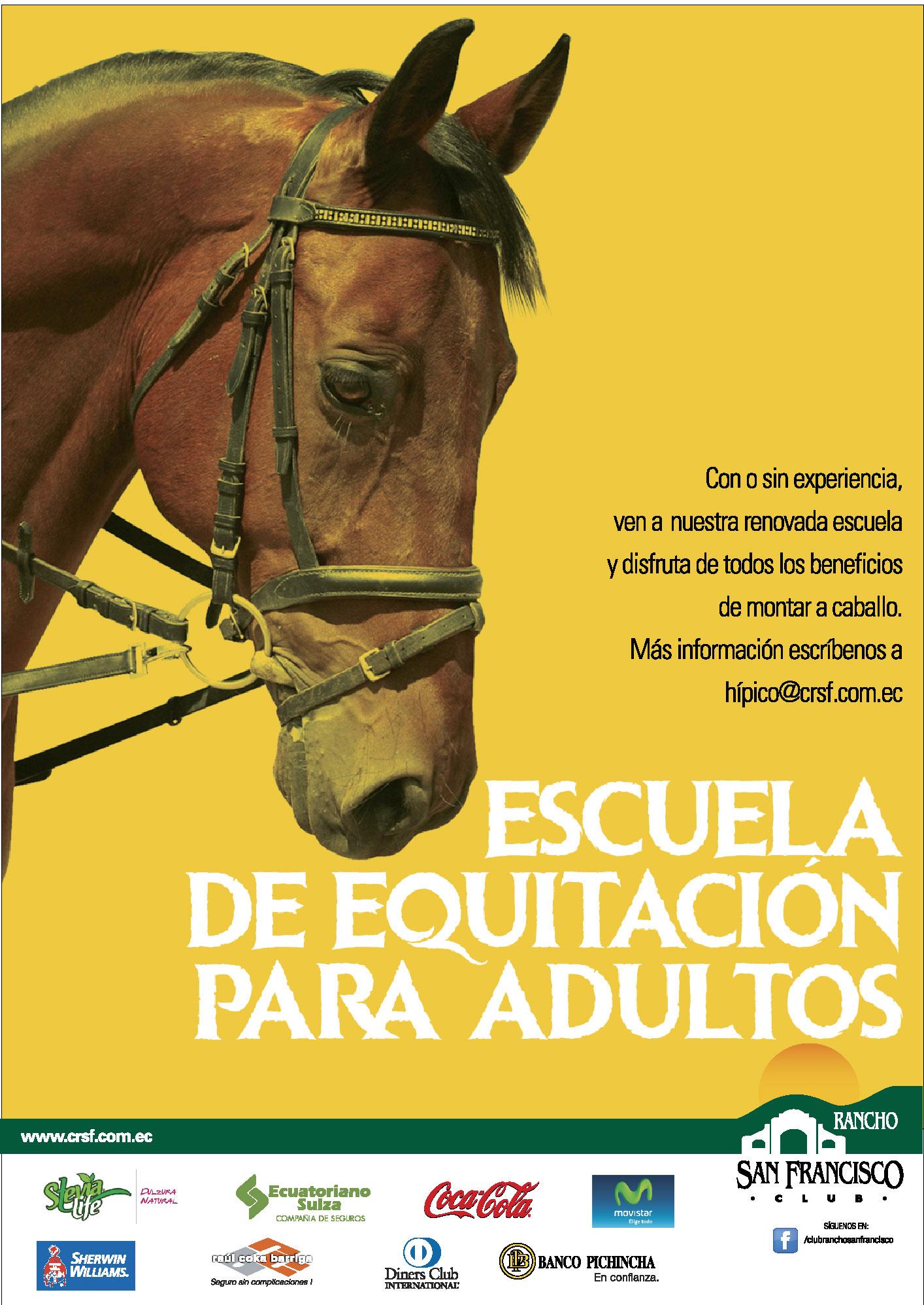 equitacion-adultos_out-01