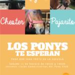 LOS-PONYSweb